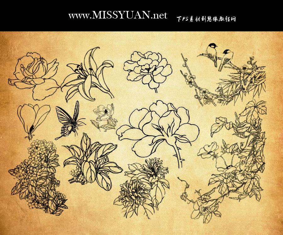 中国传统古典线描花朵花枝PS笔刷