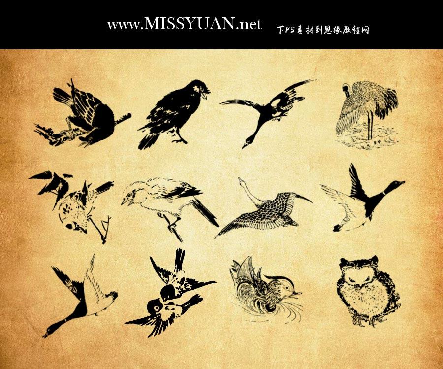 复古鸟类刻印画PS笔刷