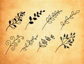 手绘植物藤蔓藤条PS笔刷