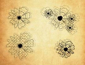抽象的盛开花朵PS笔刷