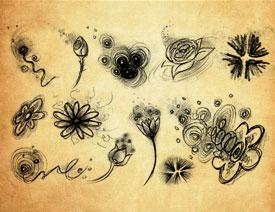 手绘铅笔画花朵和图案PS笔刷