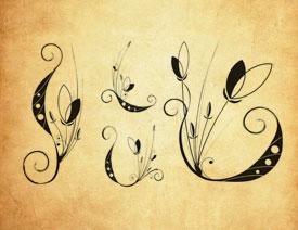 梦幻的抽象花朵PS笔刷
