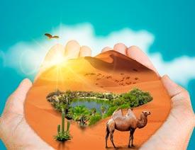 2017最新注册送白菜网创意合成手中捧着的沙漠风景图