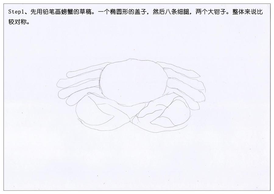 彩色铅笔画之手绘美食大闸蟹,PS教程,思缘教程网