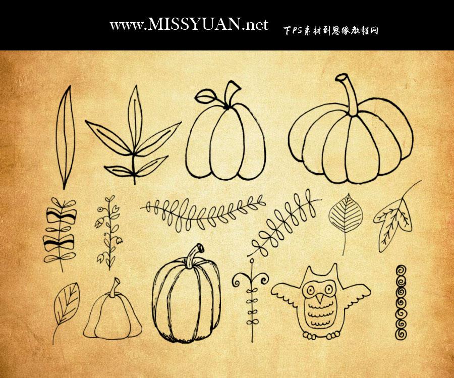 手绘南瓜和植物藤蔓PS笔刷