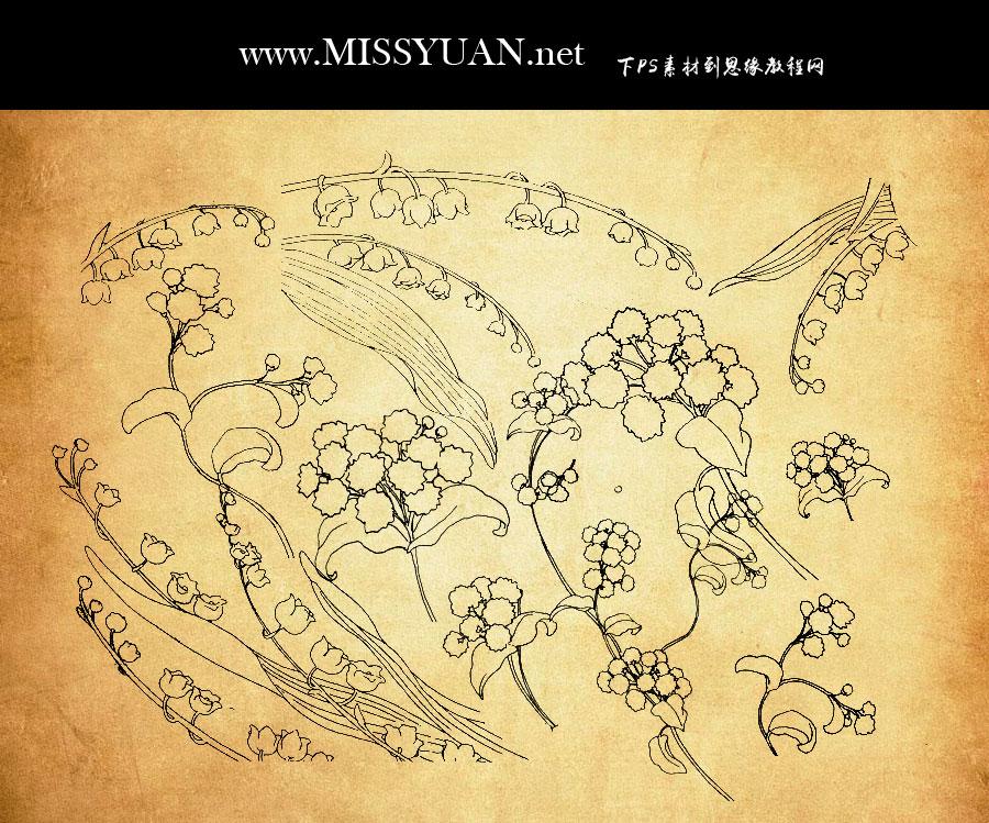 线条轮廓花朵装饰PS笔刷