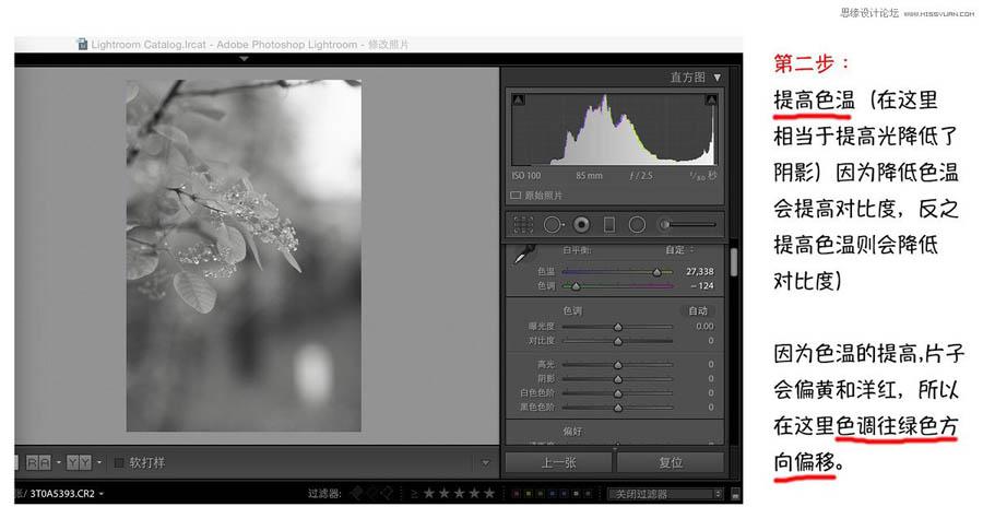 Photoshop快速调出唯美风格的蓝色艺术效果,PS教程,思缘教程网
