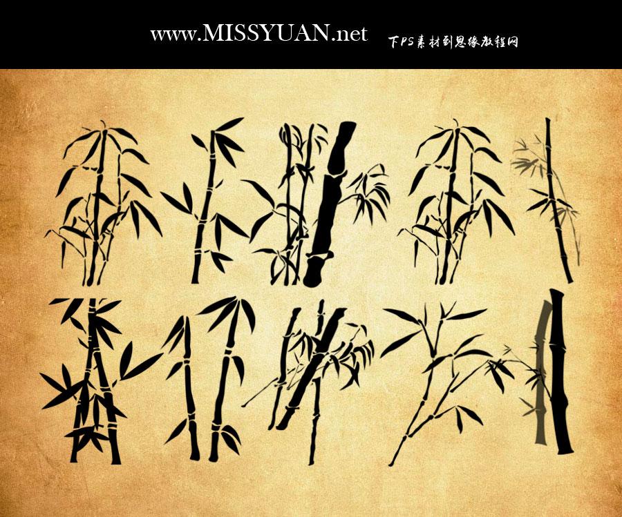 手绘矢量风格竹子和竹叶PS笔刷