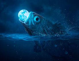 创意合成:用PS合成吞月的鱼怪作品
