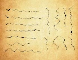 圆点组成的虚线线条PS笔刷