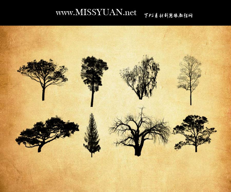枯树和树木PS笔刷