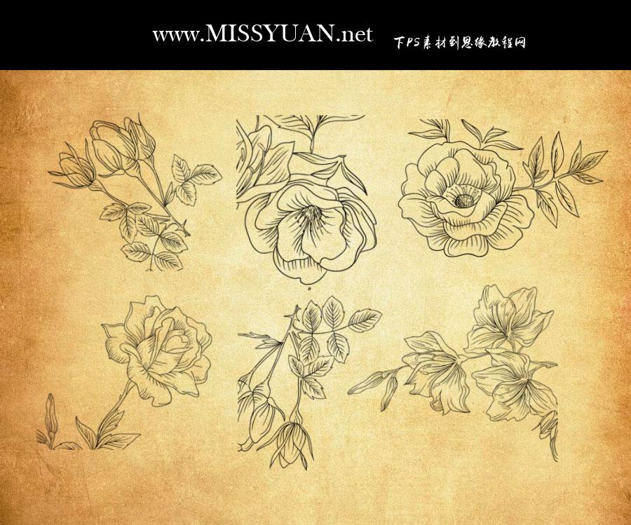 手绘花朵和花枝PS笔刷