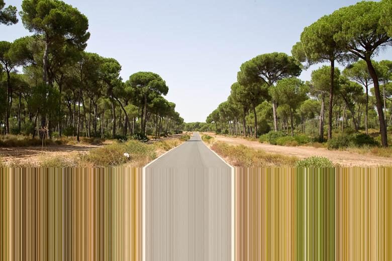 抽象作品:用PS设计电影节海报作品,PS教程,思缘教程网