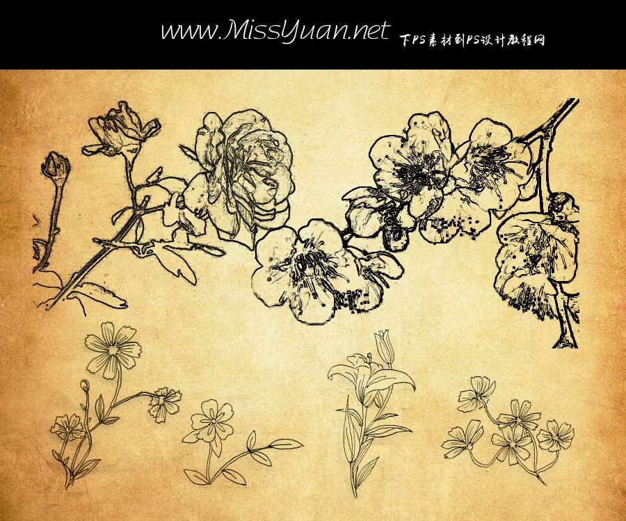 线描花朵花枝PS笔刷