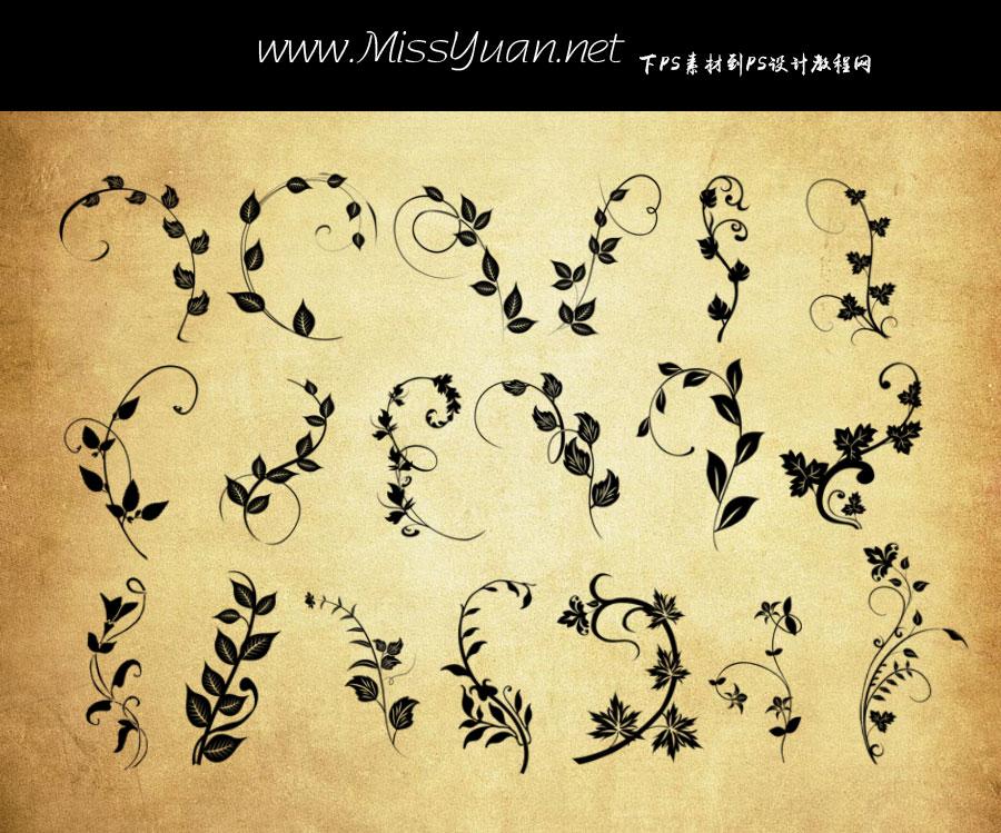 植物藤蔓和花藤PS笔刷
